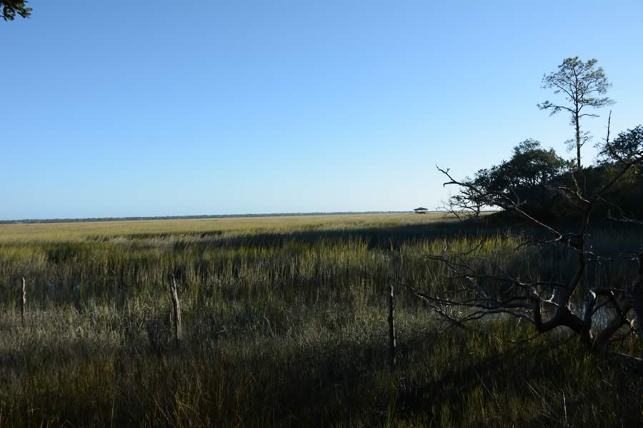 45_60_Acres_St_Simons_Island_GA_Tital_Marsh
